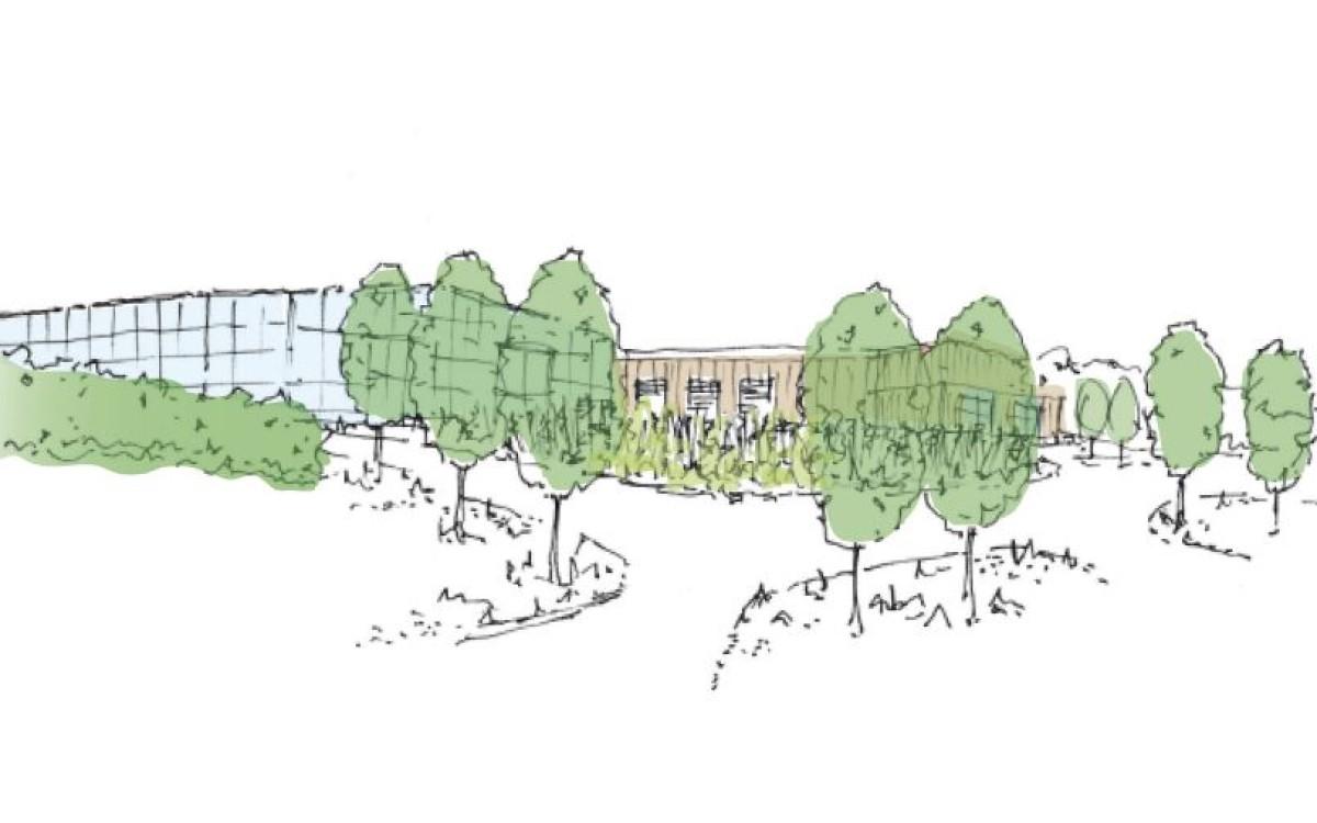 Concept planting scheme